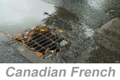 Picture of Stormwater Pollution Prevention v3 (Canadian French) (PC Only)
