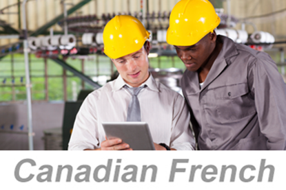 Image de Applying Electrical Standards (Canadian French) (PC Only)