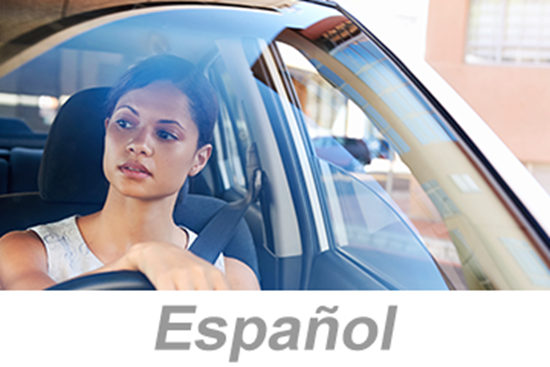 Picture of Defensive Driving - Small Vehicles (Spanish)
