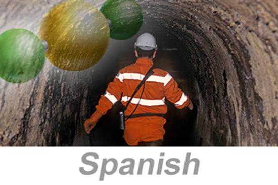 图片 Hydrogen Sulfide (H2S) Awareness (Spanish)