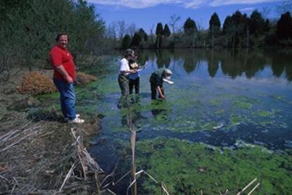 Bild von Environmental Overview (US)