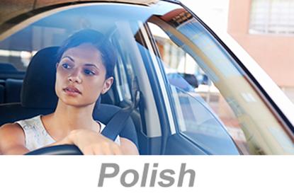 Imagen de Defensive Driving - Small Vehicles - Global (Polish)